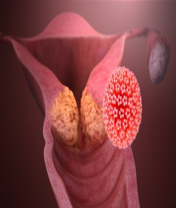 Facts about pap smear test